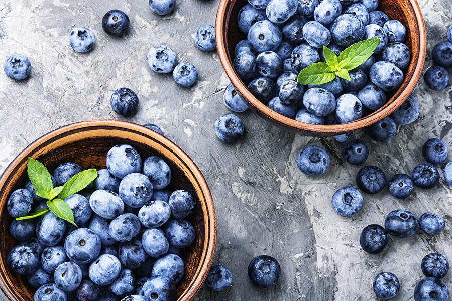 Berries blue berries Australia